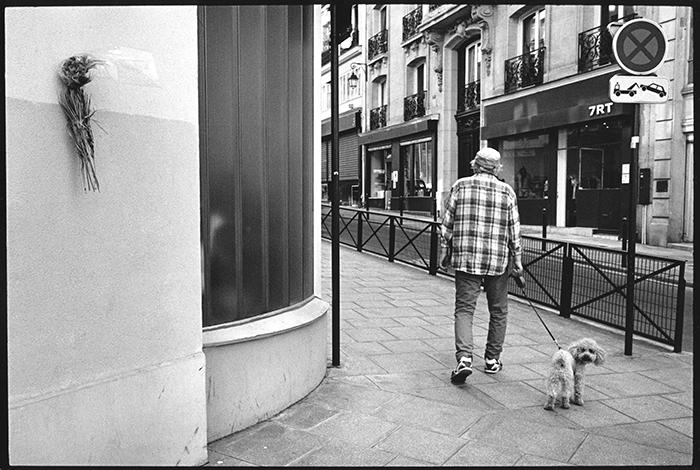 Paris / France 2015