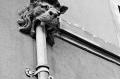Gargouille-+-tuyau---lect---84